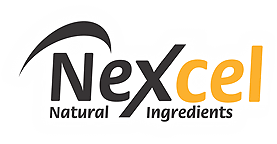 Welcome To Nexcel